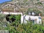 Kostos Paros   Cycladen   Griekenland foto 17