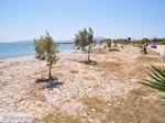 Ergens tussen Farangas en Aliki | Paros Cycladen | Griekenland foto 2
