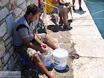 Naoussa Paros   Cycladen   Griekenland foto 40