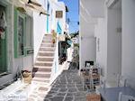 Naoussa Paros   Cycladen   Griekenland foto 70