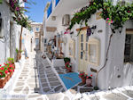 Naoussa Paros   Cycladen   Griekenland foto 74