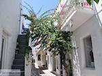 Naoussa Paros | Cycladen | Griekenland foto 83