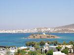 Naoussa Paros | Cycladen | Griekenland foto 106 - Foto van De Griekse Gids